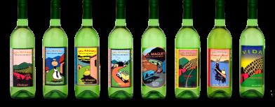 bottles-all