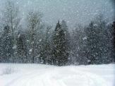 Snowstorm-2
