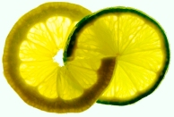 lemon_and_lime.5384122